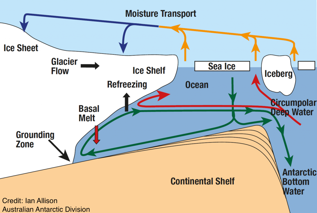 Schematic of the 2D circulation under an ice shelf